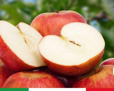"""Diabete, scoperto il frutto italiano che riduce i rischi della malattia """"Ne bastano due al giorno"""""""